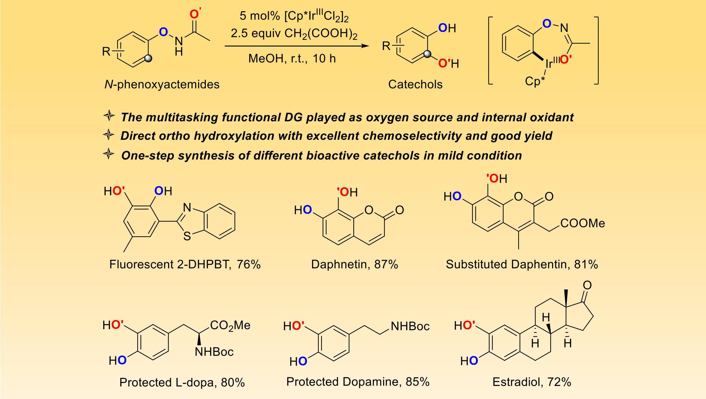 化生学院赵劲课题组发展温和条件下一步合成邻苯二酚类化合物新策略