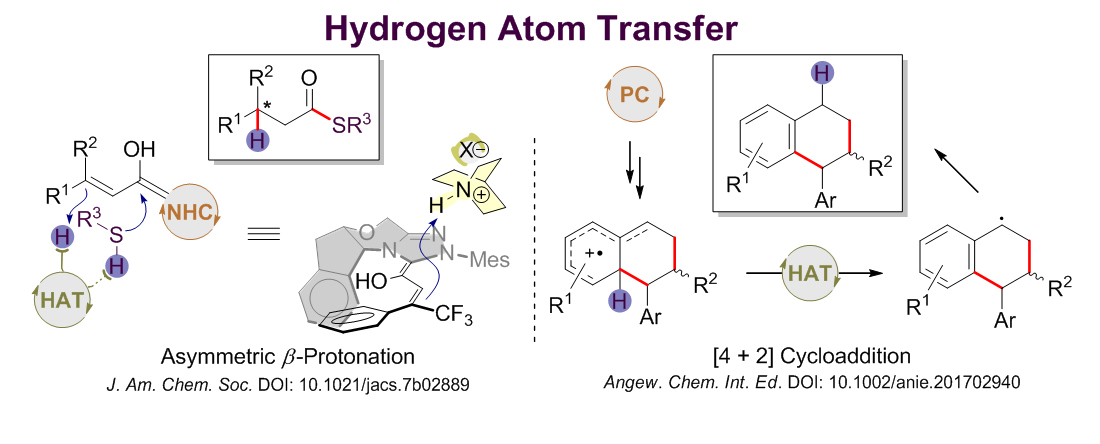 4166am备用黄湧教授课题组在选择性氢转移策略方面取得新进展