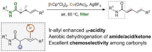 化生学院黄湧课题组发展铱催化的γ,δ-不饱和酰胺及羧酸的需氧脱氢新策略