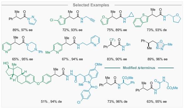 """化生学院黄湧课题组发展基于""""瞬间稳态""""的不对称质子迁移策略制备β-手性酰胺"""