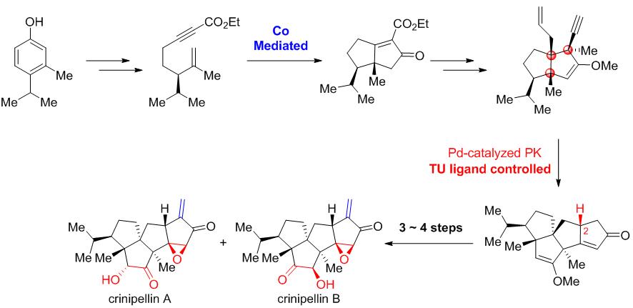 杨震/龚建贤课题组完成天然产物crinipellin A、crinipellin B的不对称全合成