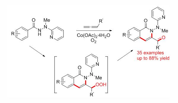 翟宏斌课题组在MHP导向的C-H活化联烯三官能团化串联反应方面取得重要进展