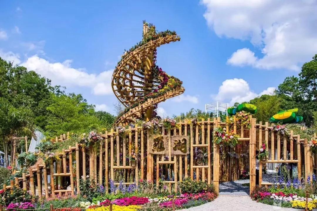开放、包容、人文 | 北大深研院助力深圳首届国际花展