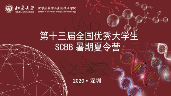 鹏城万里,化生等你——北京大学化生学院举办2020年全国优秀大学生暑期线上夏令营